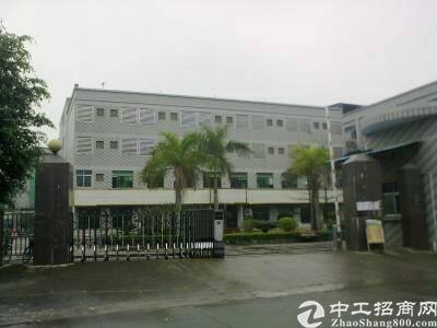 中堂一手房东标准一楼1600平方出租,仓库招租
