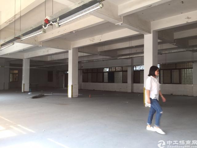 塘厦镇中心标准一楼960平米带装修