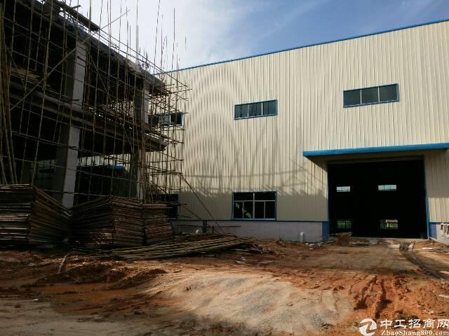 横沥全新钢构厂房招租