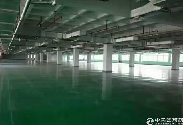 新出标准厂房