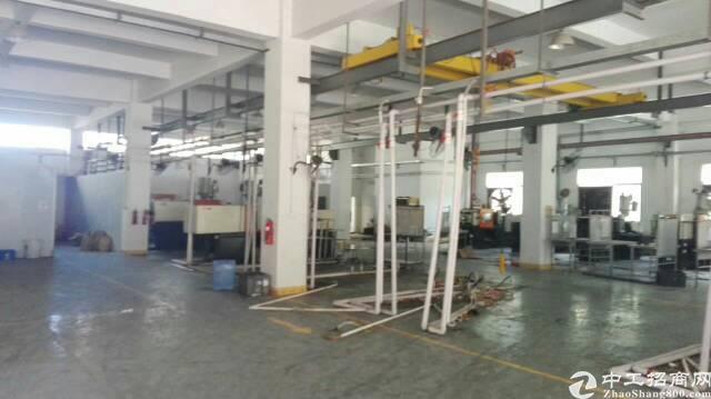 清溪可以做物流,仓库,重工业单一层厂房-图3