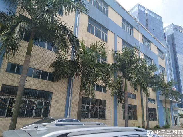 沙井洪田高速出口一楼2000平方出租。