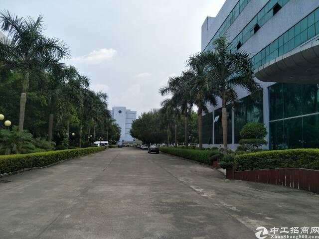 清溪镇高端电商产业园35000平方招租可分租