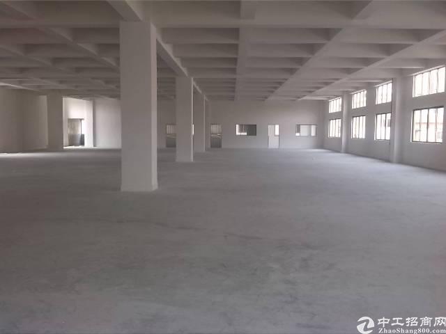 大岭山大型工业园标准厂房层高6米1500平方厂房出租