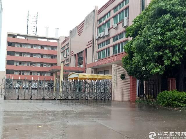 常平新出独院标准厂房4500平米,宿舍1680平米出租