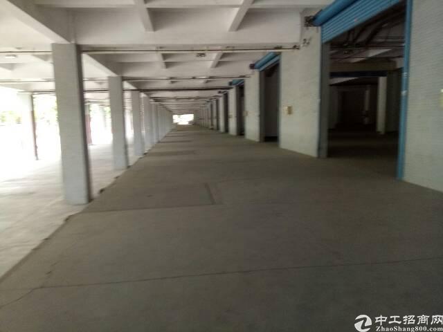 盐田港标准物流仓库,大空地带充足停车位,充足卸货平台-图4
