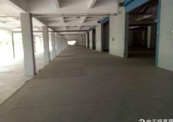 盐田港标准物流仓库,大空地带充足停车位,充足卸货平台图片4