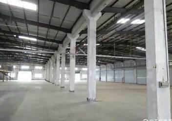 标准物流仓库8500,靠公明,仅租20块可分租!8米高图片1