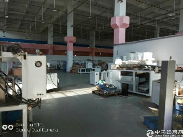 清溪可以做物流,仓库,重工业单一层厂房-图4
