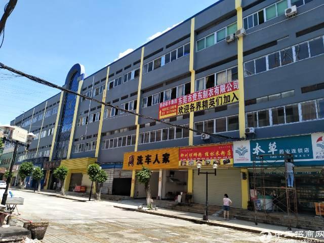 大宁省道旁低价单一层亿万先生面积5400方,全新装修带宿舍