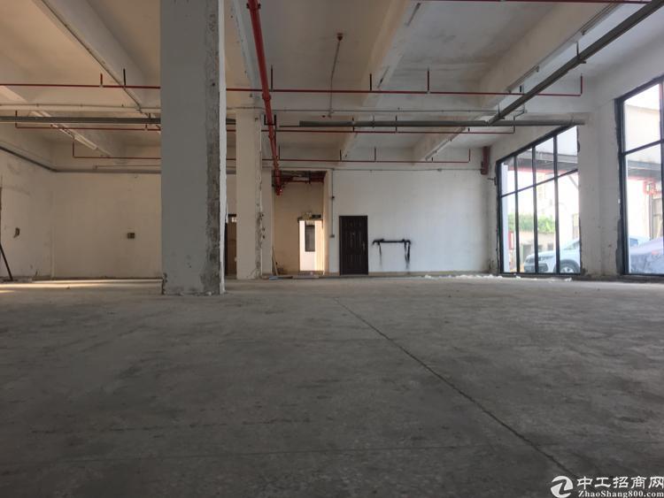 横岗大康一楼仓库600平米厂房出租-图3