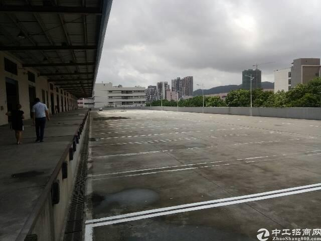 盐田港标准物流仓库,大空地带充足停车位,充足卸货平台-图5