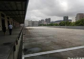 盐田港标准物流仓库,大空地带充足停车位,充足卸货平台图片5