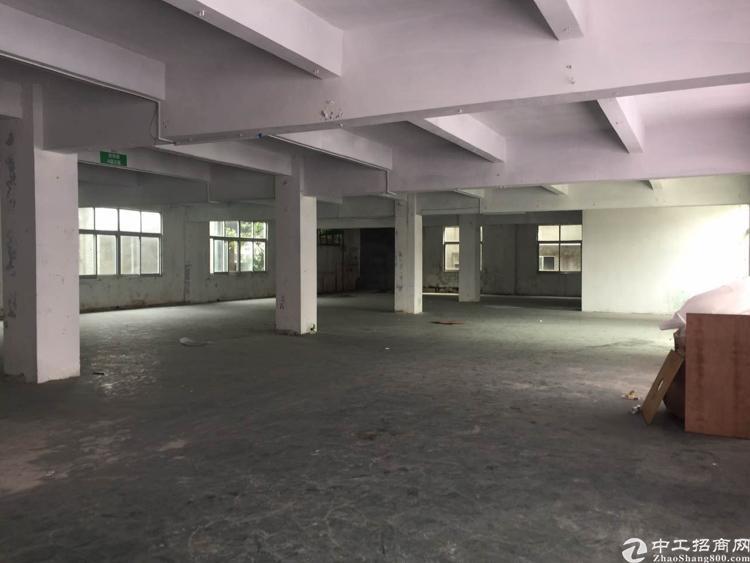 厚街镇三屯村400平原房东仓库出租