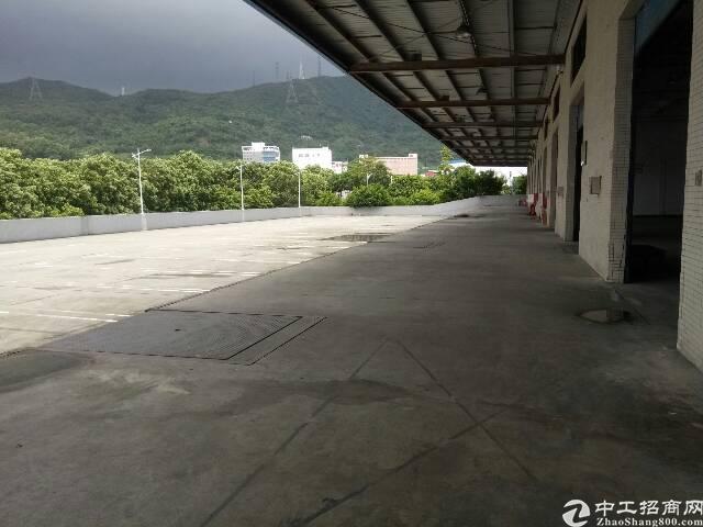 盐田港标准物流仓库,大空地带充足停车位,充足卸货平台-图2