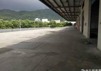盐田港标准物流仓库,大空地带充足停车位,充足卸货平台图片2