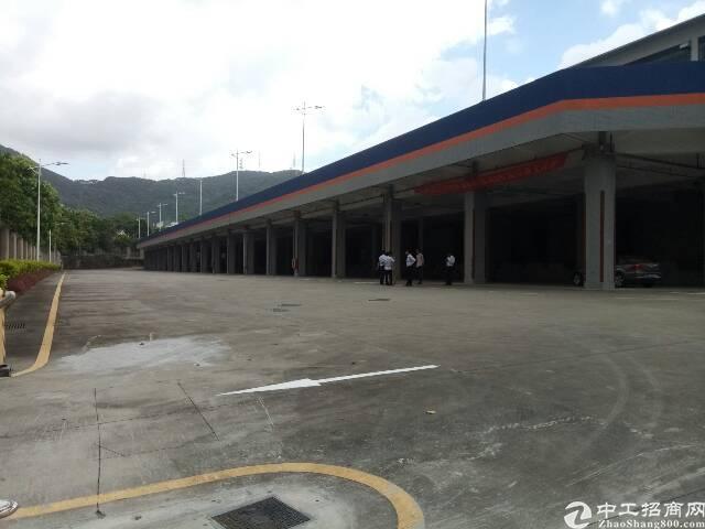 盐田港标准物流仓库,大空地带充足停车位,充足卸货平台-图3