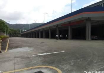 盐田港标准物流仓库,大空地带充足停车位,充足卸货平台图片3