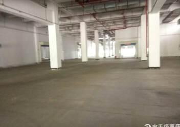 盐田港标准物流仓库,大空地带充足停车位,充足卸货平台图片1