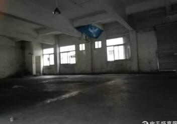 一楼仓库招租图片1