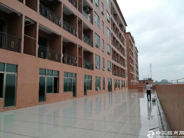 横沥镇镇中心明包写字楼9500平方