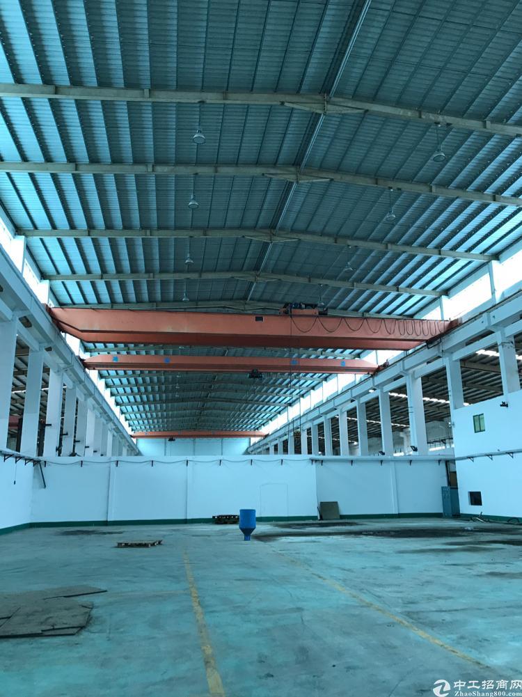 万江大型工业园钢构厂房出租,高12米