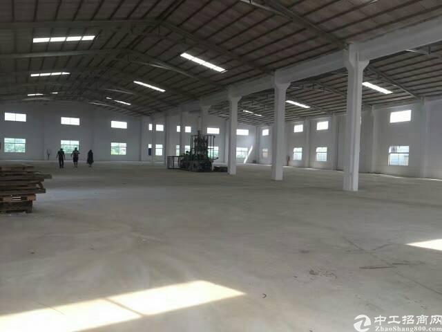 坪地标准物流仓库2万平米出租-图2