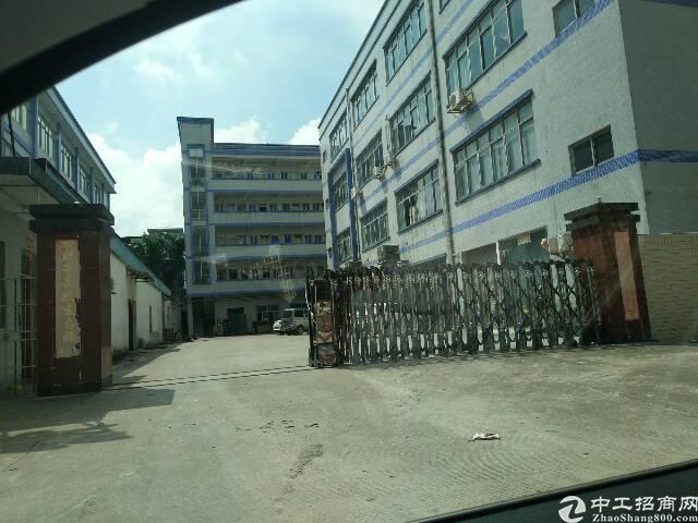 东坑路口附近4000平米标准厂房招租