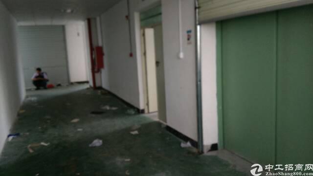 圳美楼上带办公室装修650小面积水电单位有消防喷淋-图2
