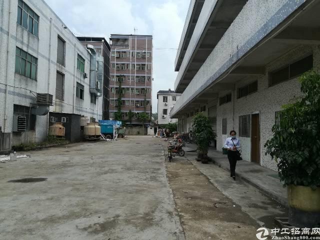 一楼仓库招租-图3