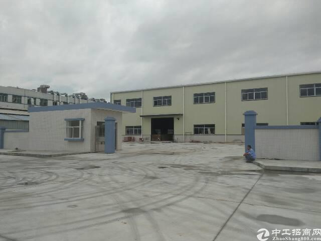 企石镇独门独院单一层滴水8米钢构厂房分租