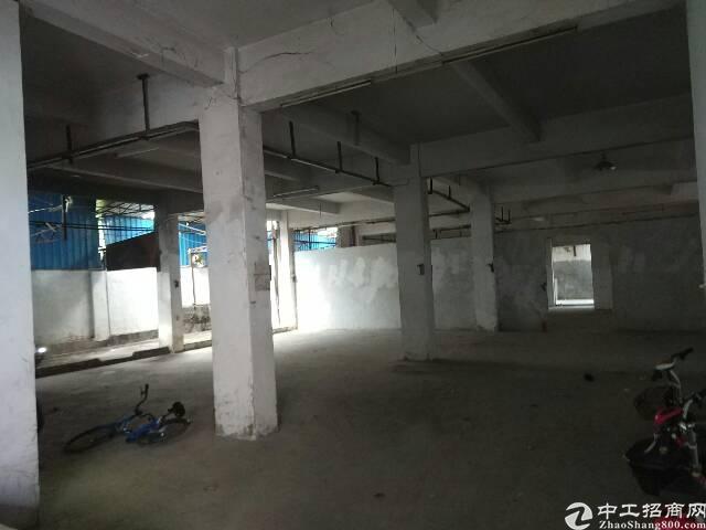 横岗原房东厂房仓库出租约1000㎡-图5