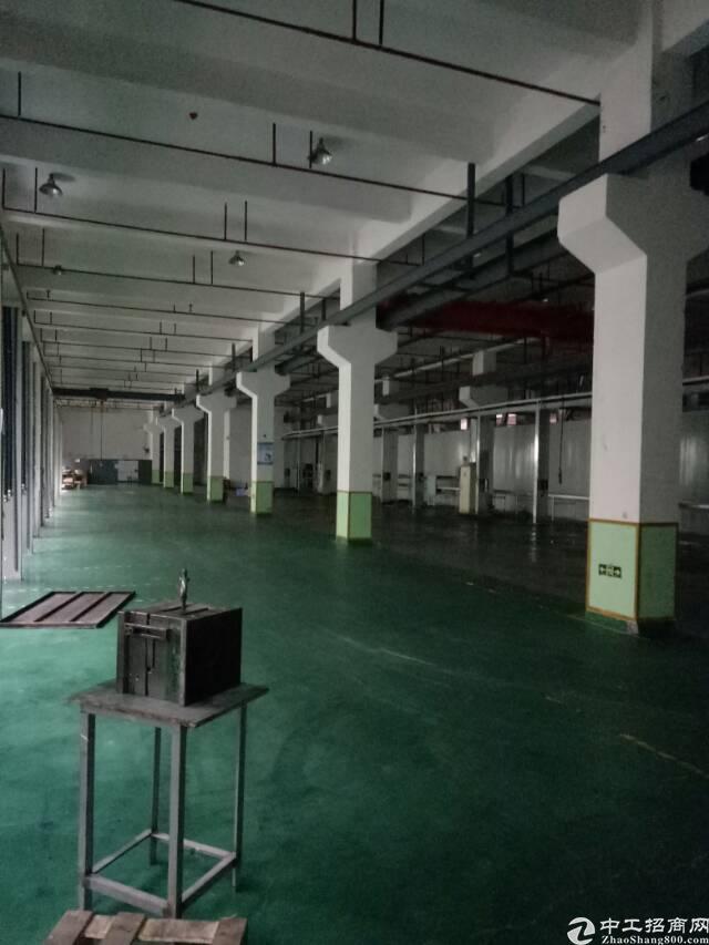 坑梓龙田社区一楼1460平方带牛角装修厂房招租-图3