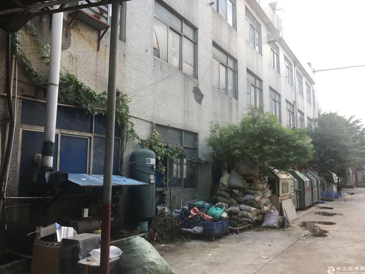 横岗街道大康社区独门独院一楼厂房出租,适合仓库,各行业-图5