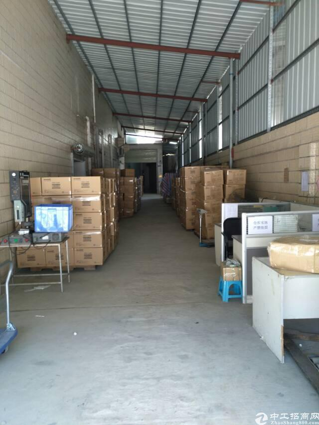 村头一楼700平仓库出租5千平空地雨棚可进货柜-图3
