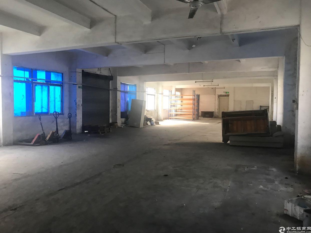 横岗街道大康社区独门独院一楼厂房出租,适合仓库,各行业-图3