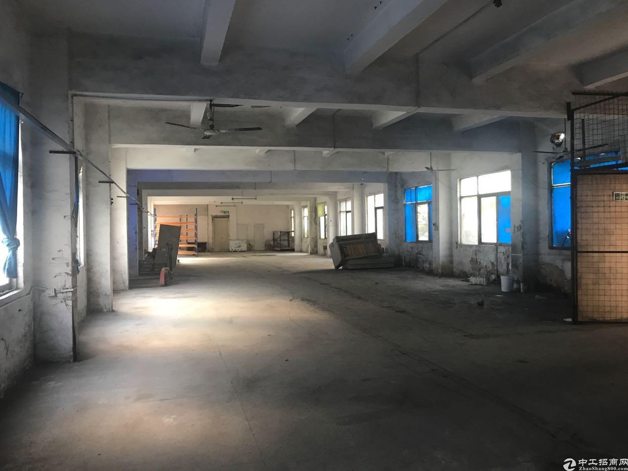 横岗街道大康社区独门独院一楼厂房出租,适合仓库,各行业-图2