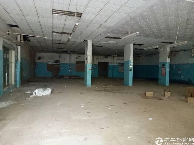 观澜福前路旁一楼适合做仓库厂房招租-图2