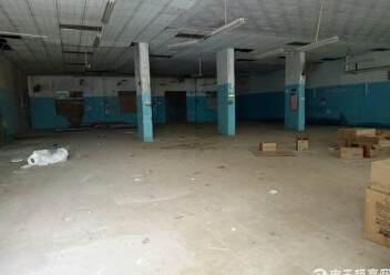 观澜福前路旁一楼适合做仓库厂房招租图片1