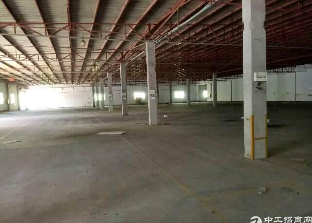 横岗新出物流仓库,很适合快递。空地六万平