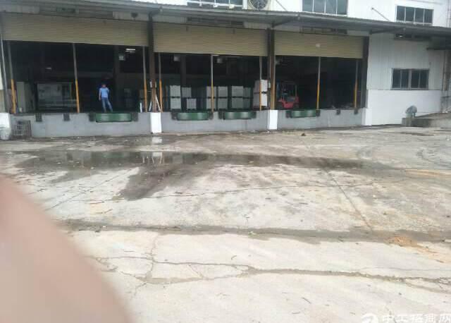福永新出物流仓库3000平米
