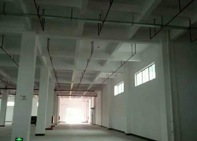 龙岗10万平米物流仓库厂房出租