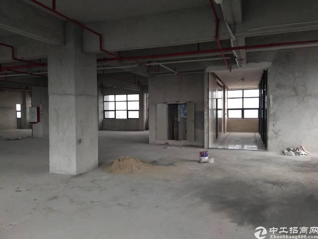 厚街新出商业楼招租780方/层
