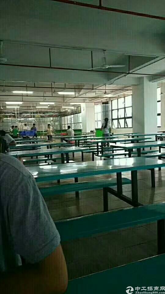 大型工业园区食堂,食堂,没错是食堂,黄江裕园食堂出租-图3
