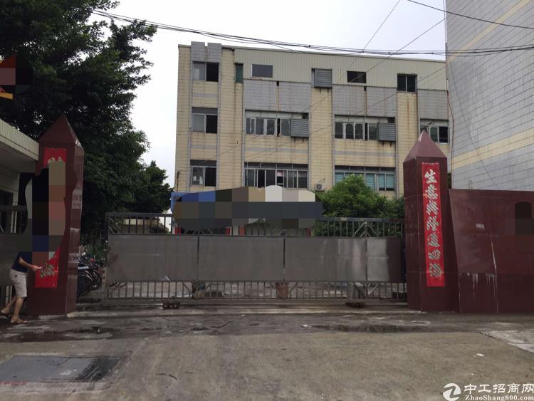 虎门小捷窖万科附近现成制衣厂二楼1000平方,有办公室装修-图2
