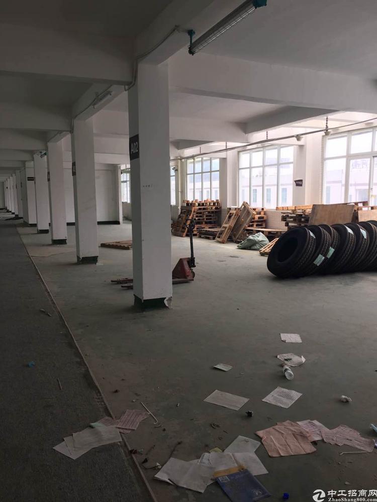 东莞东深二线广源物流园旁原房东实际面仓库出租-图4