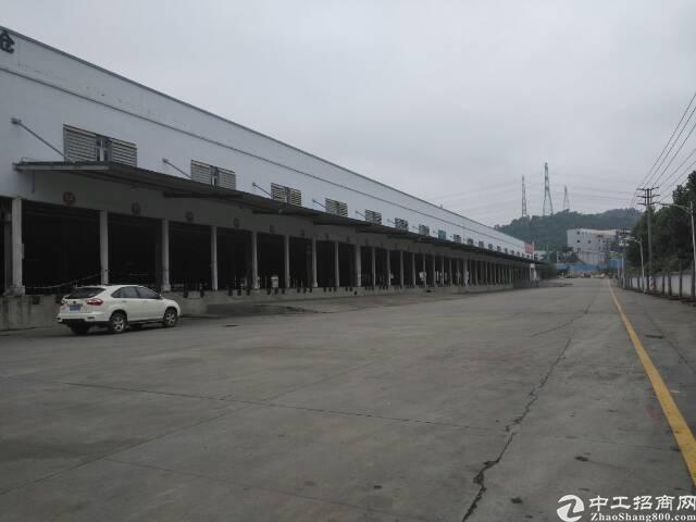 龙华大浪新围物流园钢构厂房3500平米滴水7米