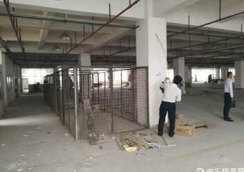 南联工业区一楼厂房仓库招租图片3