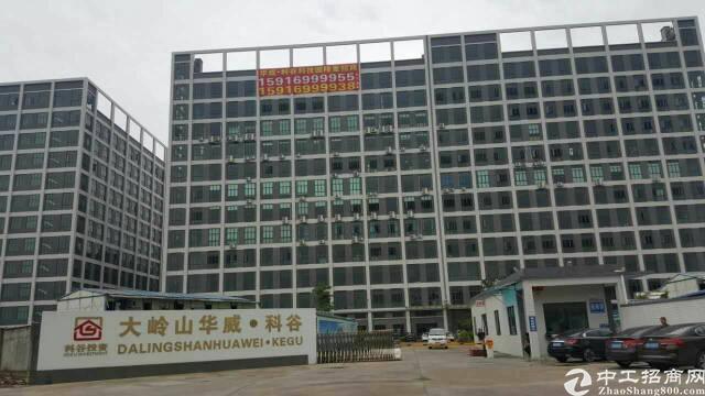 大型工业园区食堂,食堂,没错是食堂,黄江裕园食堂出租-图4