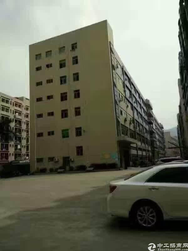 石岩机荷高速口红本独栋厂房6000平方招租